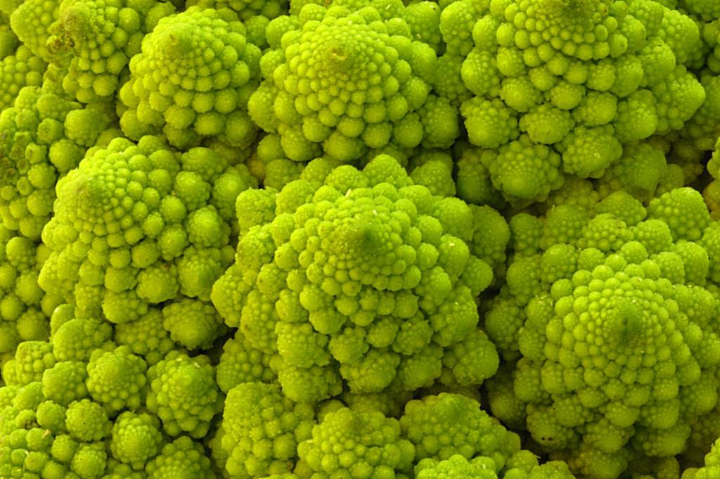 Brócolis Romanesco